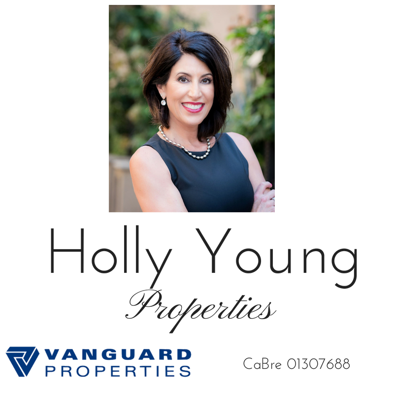 Holly Young Properties